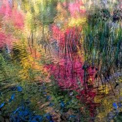 Gehlbach-Stephen-thorndike-pond-fall-I