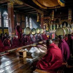 Shea-Paul-buddhist-color