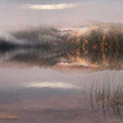 lehet-john-post_pond_yellow_and_mist_ESC4803
